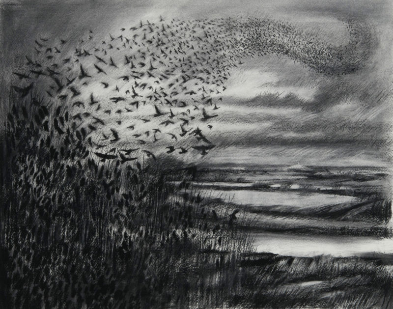 Expressive Charcoal Drawing with Kate Lynch