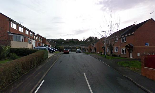 INCIDENT: In Beechwood, Yeovil. PICTURE: Google Street View