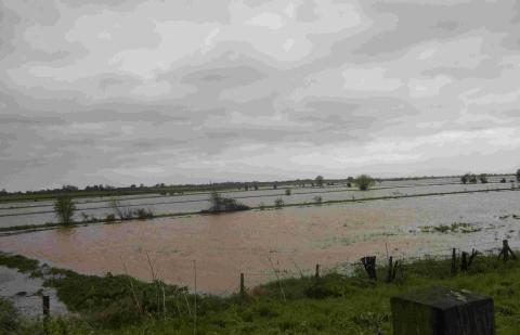 Flooding near North Curry, Taunton. Photo: stock image.