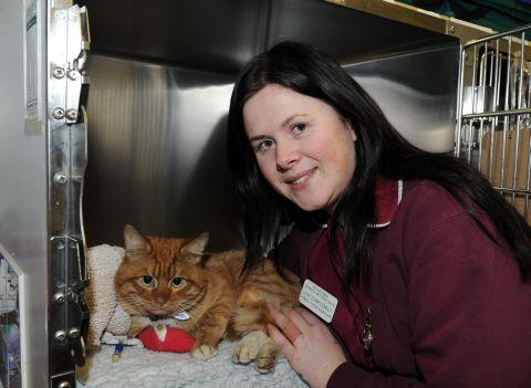 Rescued cat Fireman Sam with veterinary nurse Sam Templeman
