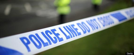 Police appeal: Motorist killed in A303 collision