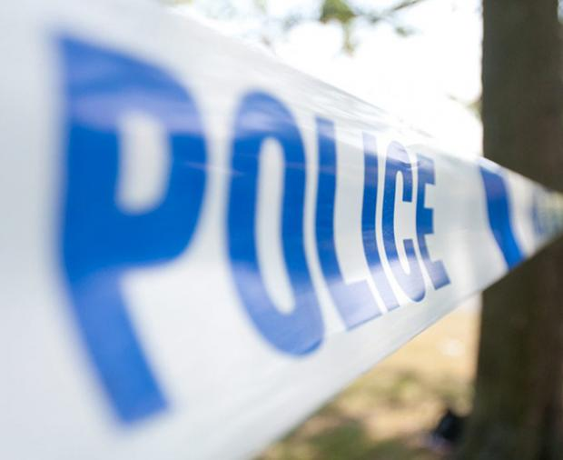 Police appeal: Fences damaged in Evercreec