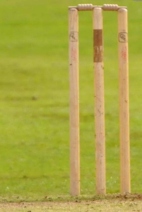 Barrington cricket family fun day revised date