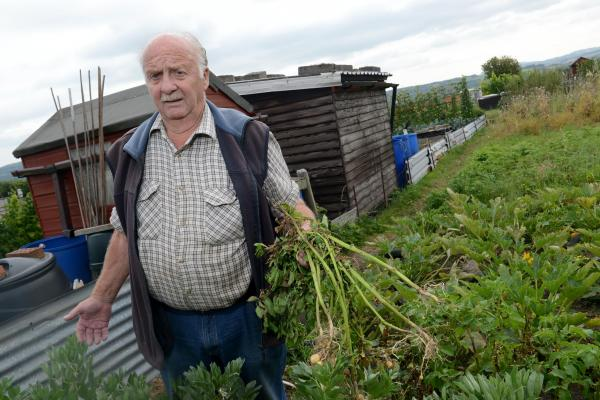 RAYMOND White says thieves are targeting Chard's allotments. PHOTO: Ash Magill.