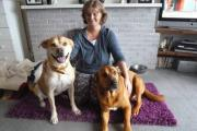 LOLA and Sherman with their new owner Julie Nield.