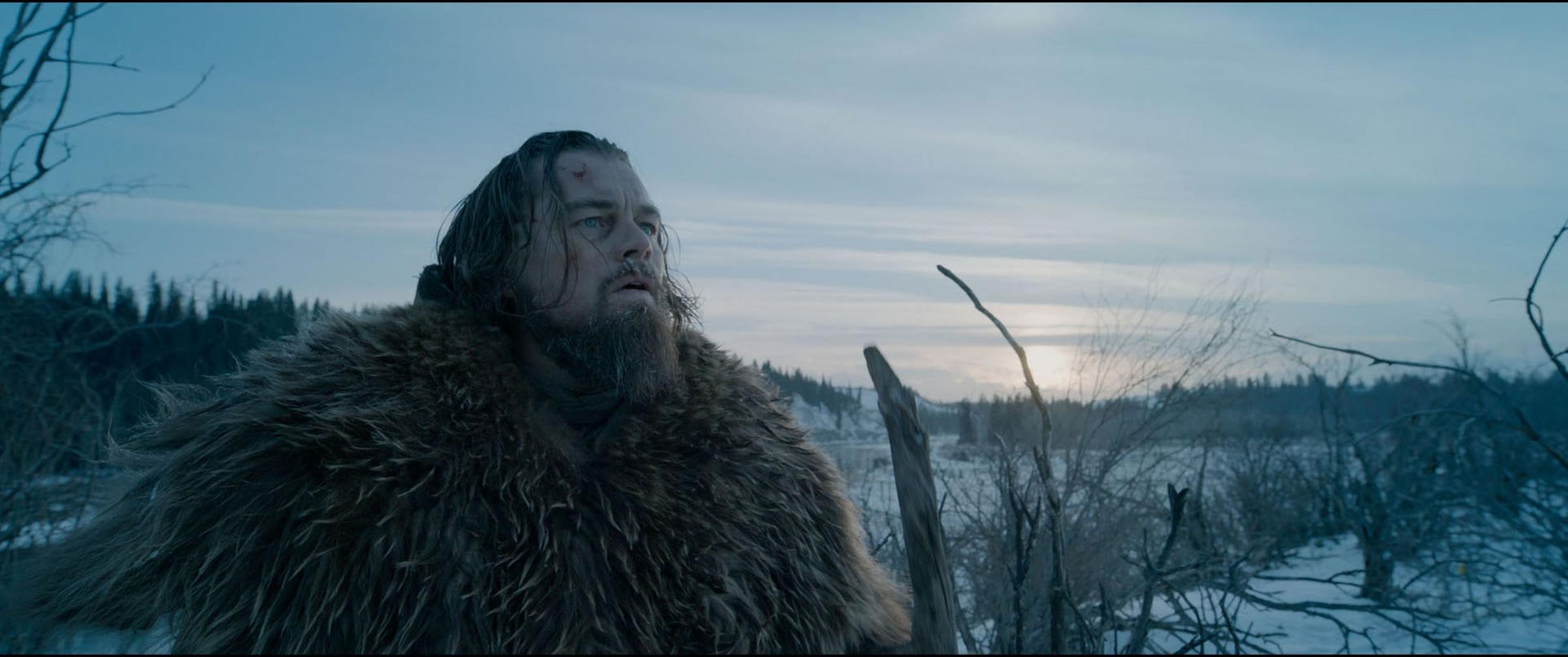 Out in the cold: Leonardo DiCaprio stars in The Revenant. (PA Photo/Twentieth Century Fox)