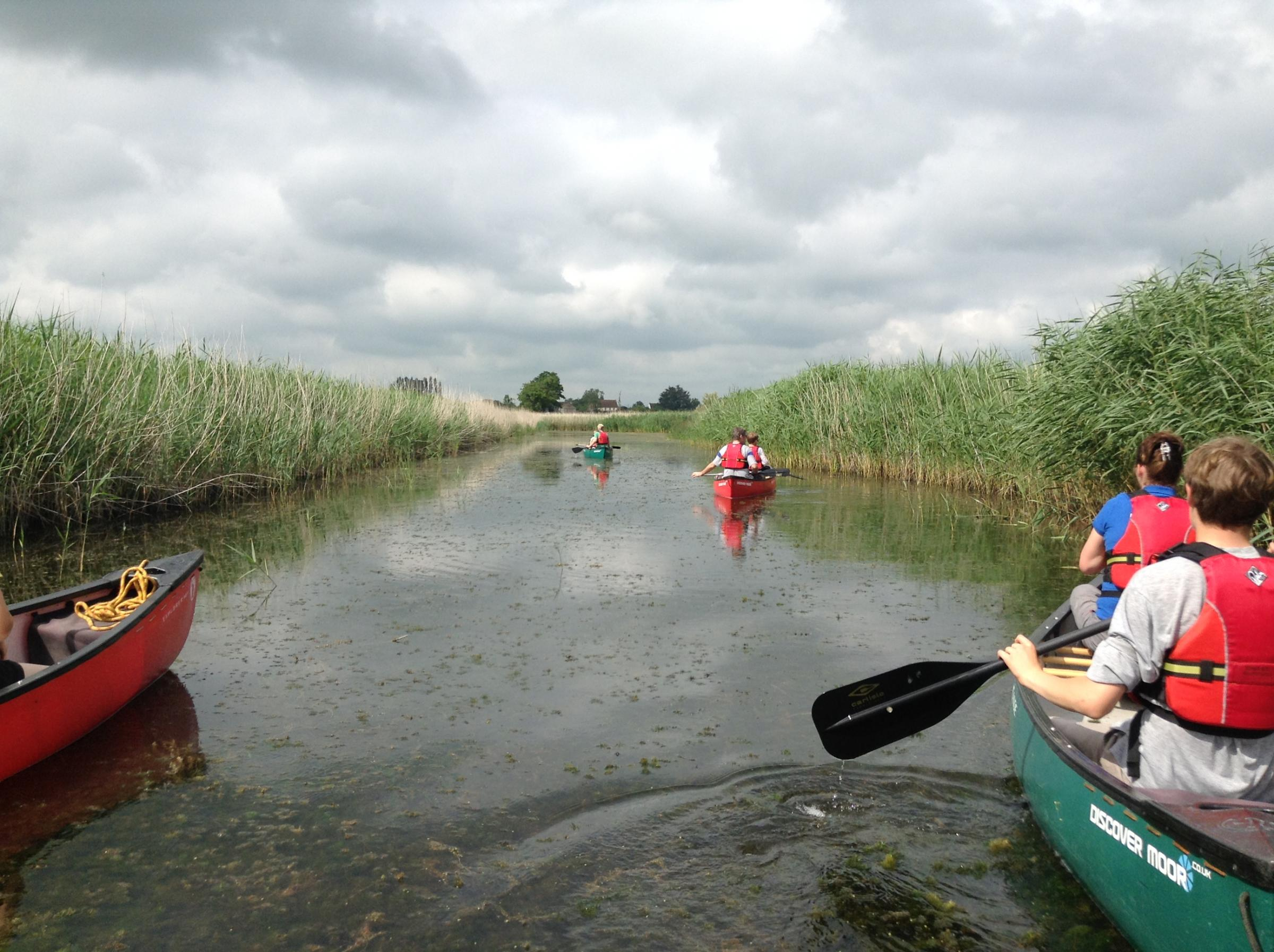 Nature by Canoe at RSPB Ham Wall