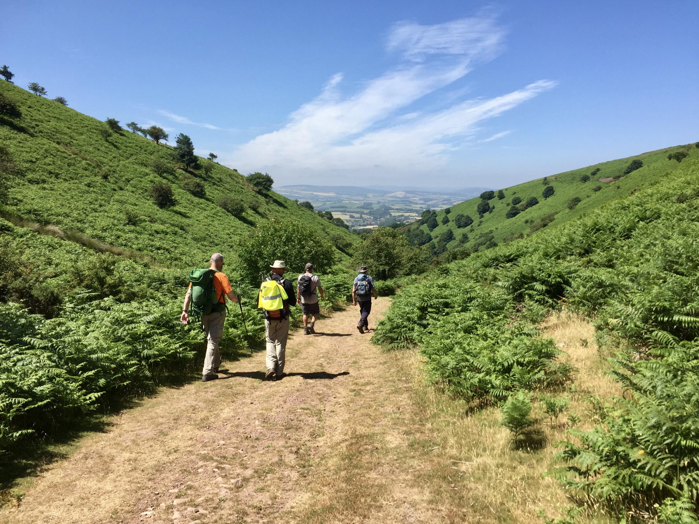 The Quantock Hills Walking Festival