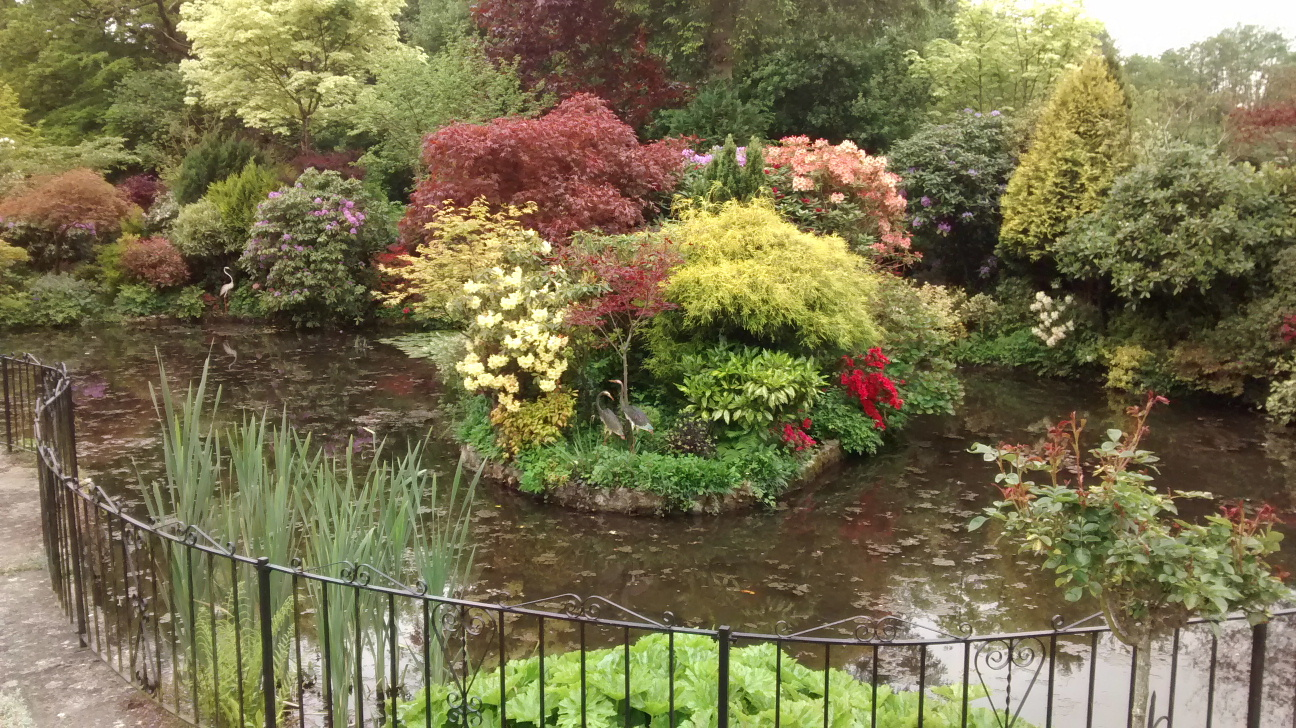 Open Garden in aid of Hospice- Lift the Latch Forton