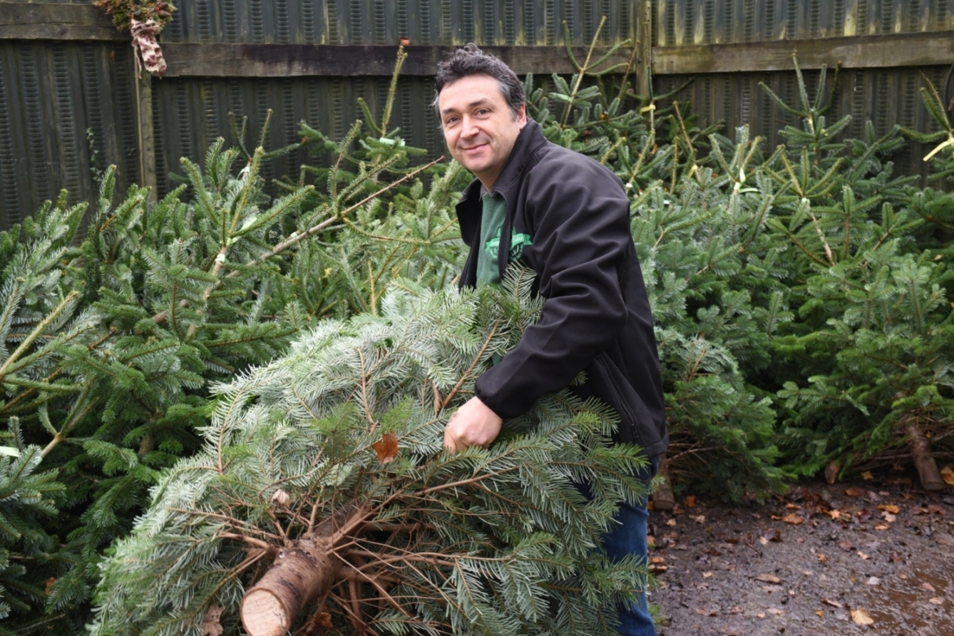 RECYCLE: Langford Lakes Christmas Tree Farm