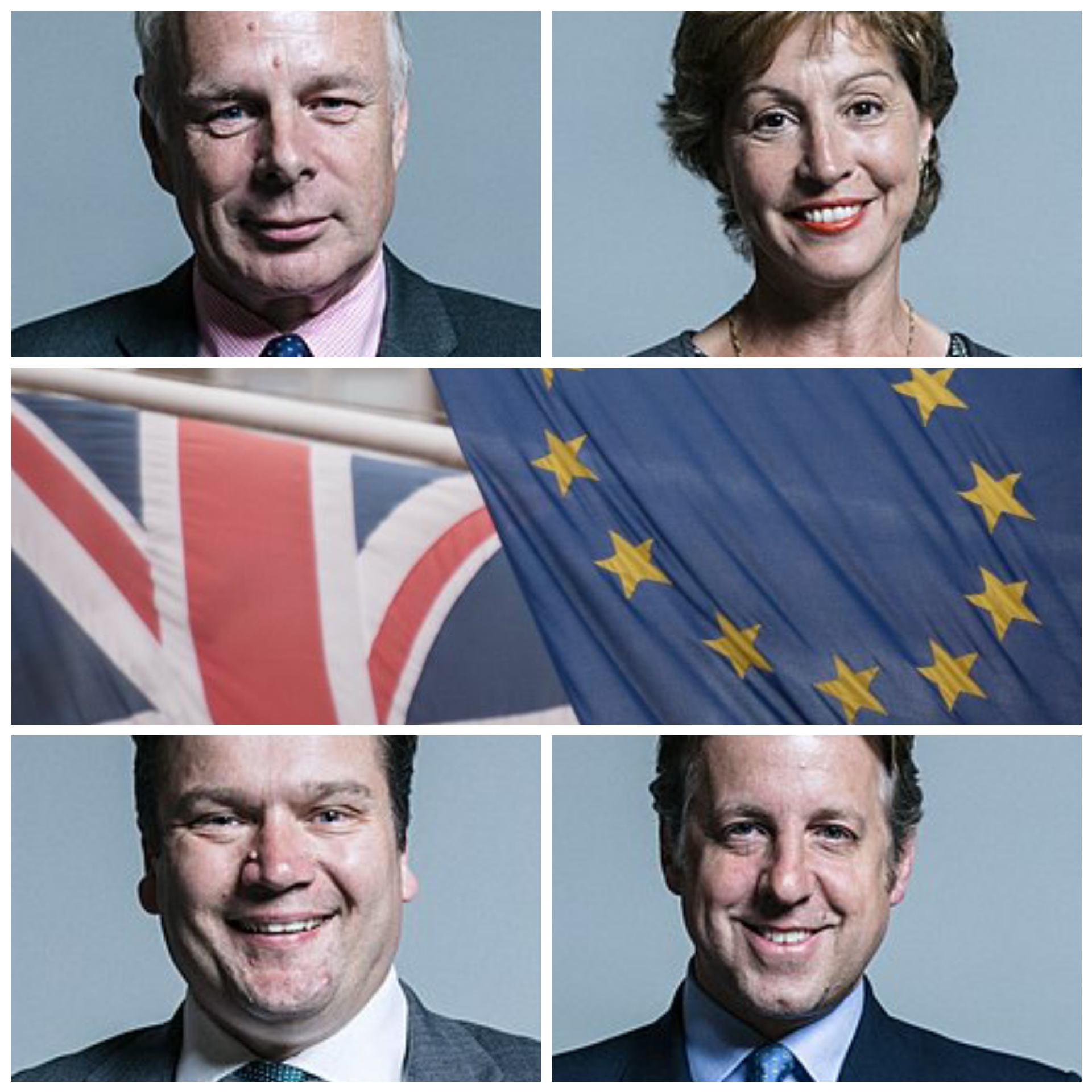 BREXIT VOTE: How Somerset MPs voted